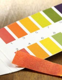 Chỉ số độ pH trong cơ thể người khoảng 7.3 - 7.4