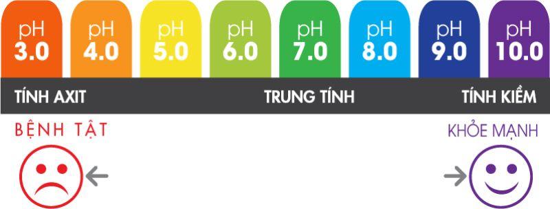 Phân chia độ pH trong cơ thể người
