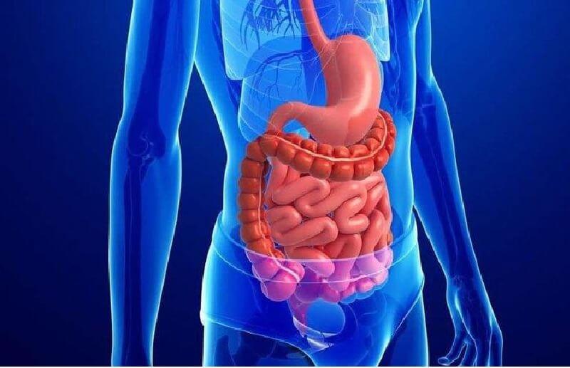 Tác dụng của tính kiềm tự nhiên có trong nước giúp trung hòa axit dư thừa, phòng bệnh dạ dày