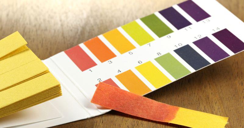 Độ pH trong cơ thể có ý nghĩa đặc biệt nhất là về vấn đề sức khỏe