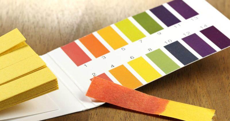 Độ pH ở mức 7.3 đến 7.4 sẽ đảm bảo an toàn cho sức khỏe