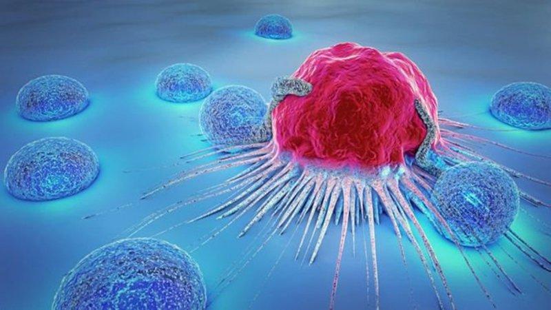 Trung hòa axit trong cơ thể sẽ giúp loại bỏ được các tế bào ung thư và sự phát triển của các gốc tự do gây bệnh