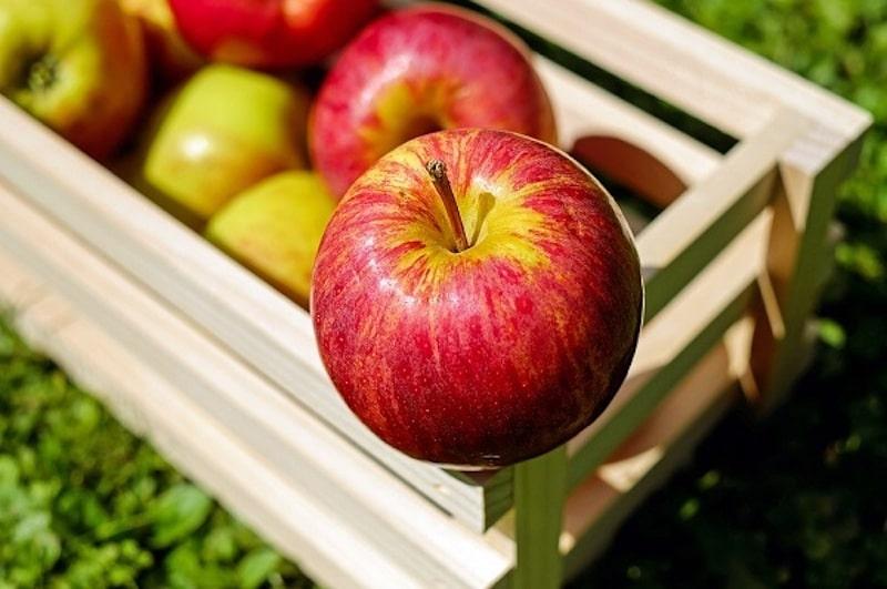 Ăn nhiều trái cây và uống nước ép hoa quả tươi sẽ giúp cân bằng độ pH trong cơ thể, bổ sung Vitamin cùng khoáng chất thiết yếu