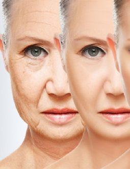 20 cách giúp bạn lão hóa ngược, lưu giữ vẻ đẹp mãi mãi
