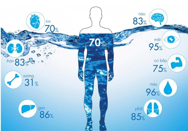 Nước điện giải được tạo ra từ máy lọc nước ion kiềm Kangen đóng vai trò quan trọng trong bảo vệ sức khỏe