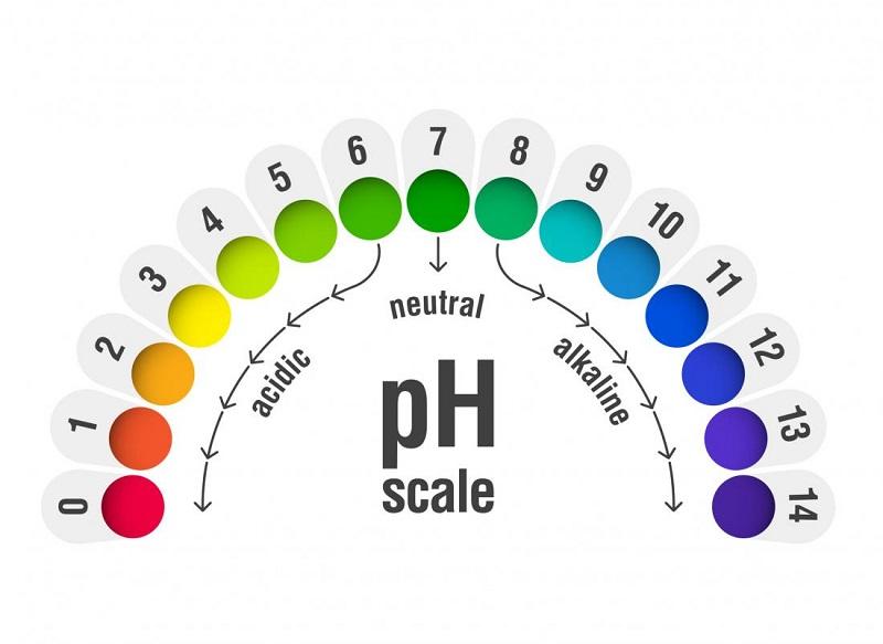 Độ pH của nước đóng vai trò quan trọng trong việc chăm sóc sức khỏe