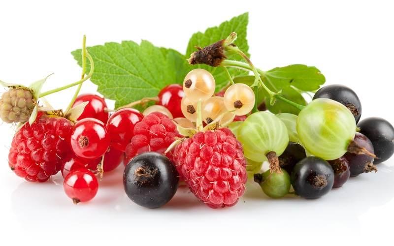 Các loại quả mọng có chứa nhiều chất chống oxy hóa tốt cho cơ thể