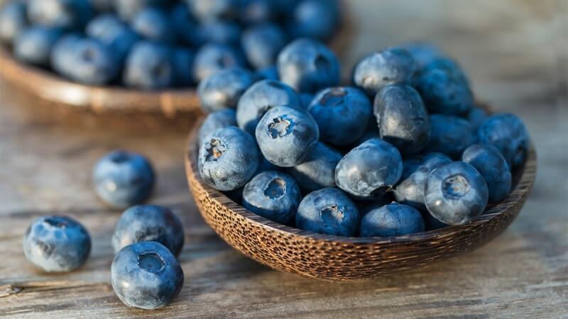 Hoạt chất anthocyanin có trong việt quất hỗ trợ phòng bệnh và loại trừ cholesterol xấu trong cơ thể
