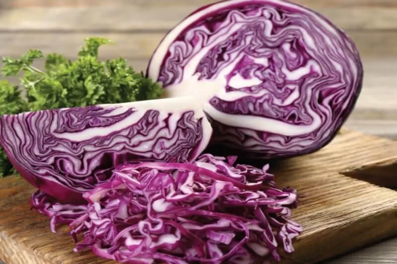 Nên đưa bắp cải tím vào thực đơn ăn uống hằng ngày để bổ sung lượng lớn chất chống oxy hóa
