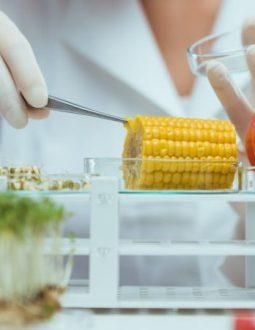 Tìm hiểu tác dụng và top 10 thực phẩm có tính kiềm nên bổ sung trong thực đơn dinh dưỡng hằng ngày