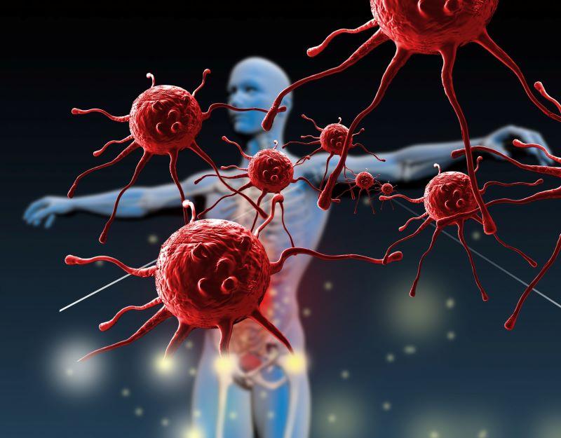 Hệ miễn dịch là tuyến phòng thủ đầu tiên và quan trọng của cơ thể
