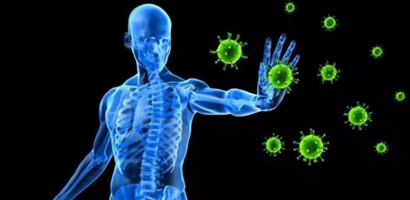 Sức đề kháng khỏe mạnh giúp ngăn chặn sự xâm nhập của virus, vi khuẩn gây bệnh