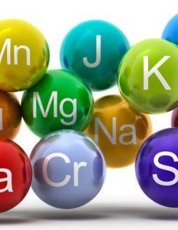 Chất khoáng gồm yếu tố vi lượng và đa lượng